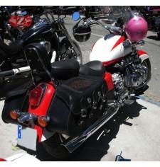 Alforjas Rígidas para Honda valkyrie mod, SUPER STAR Básica - Cabeza Águila - Trenzados Específica