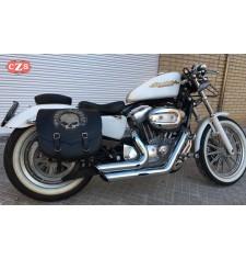 Satteltasche für Sportster Harley Davidson mod, SPARTA - Hohl für Stoßdämpfer - Schädel CZ HD - RECHT