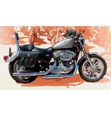 Saddlebags for Sportster Harley Davidson mod, APACHE Classic Adaptable
